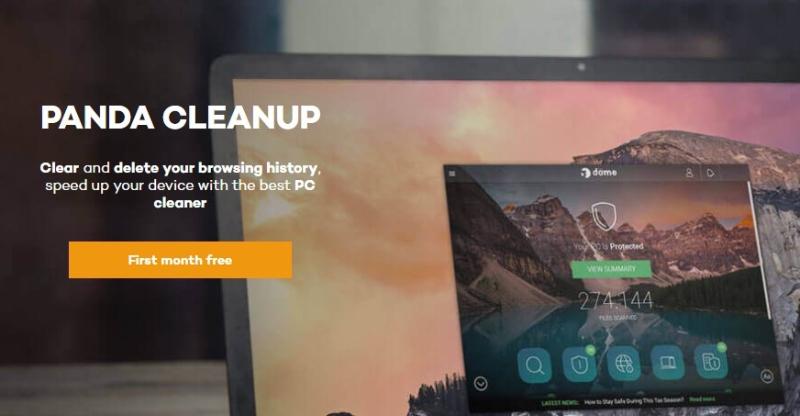 Revisión del Panda CleanUp